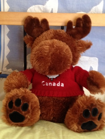 Morris the Cuddly Moose from Canada